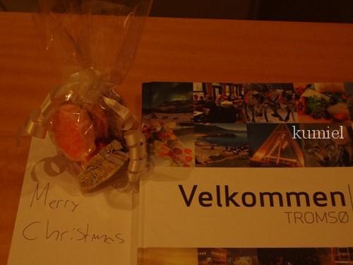 ノルウェートロムソラディソンブルホテルクリスマス
